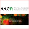Advances-in-Ovarian-Cancer-Research-Exploiting-Vulnerabilities